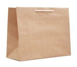 Paper Bags - Medium Carnival Eurotote - Natural Kraft