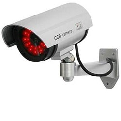 Simulated Security Cameras